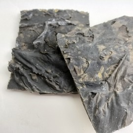 Alga Kombu  -Granel